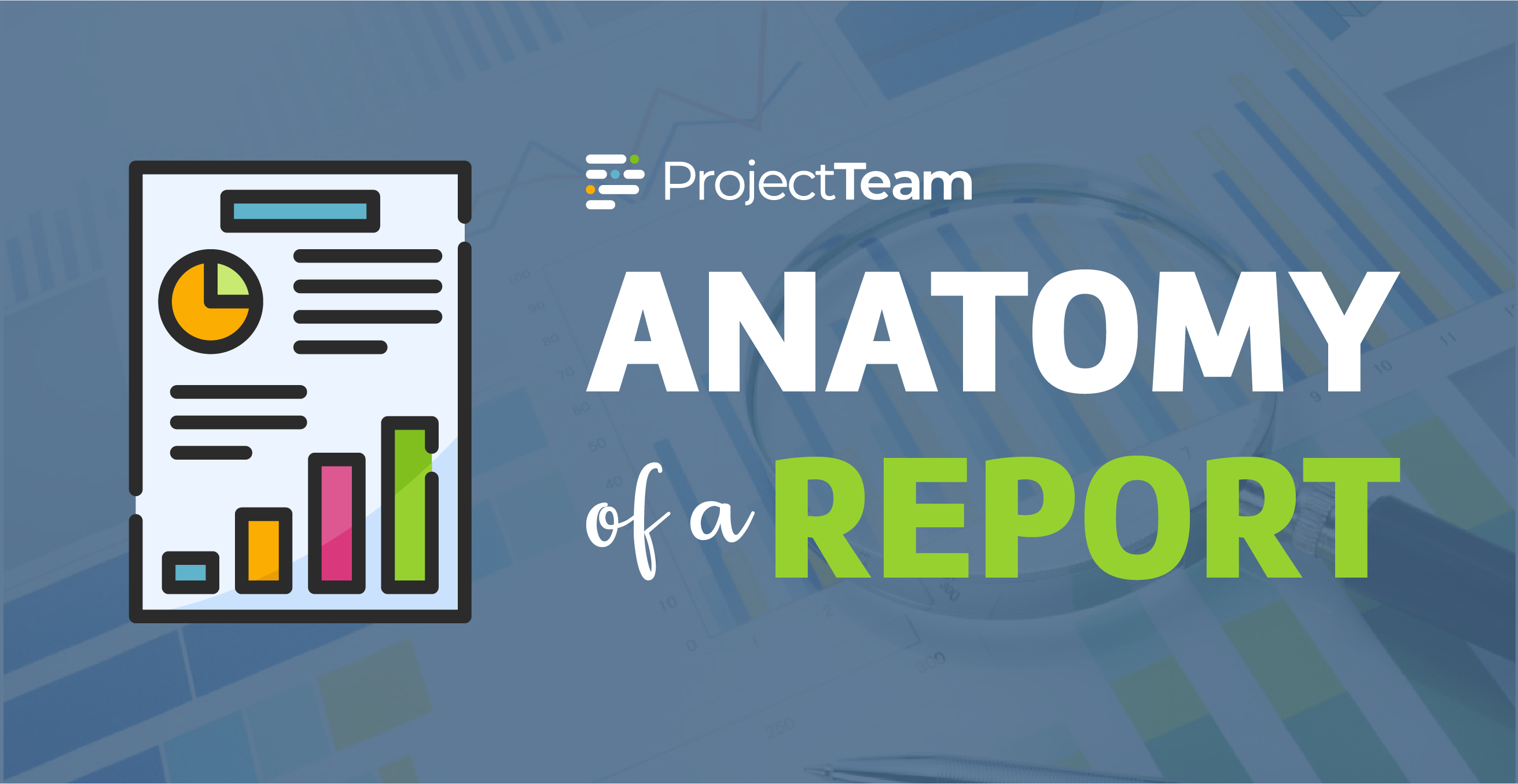 [Infographic] Anatomy of a Report